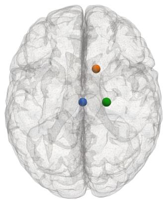 brain_mesh_points